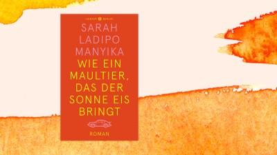 """Auf dem Umschlag von Sarah Ladipo Manyikas Roman """"Wie ein Maultier, das der Sonne Eis bringt"""" ist unter dem Titel der stilisierte Umriss eines Porsche zu sehen. (Cover: Hanser Berlin/Collage: Deutschlandradio)"""