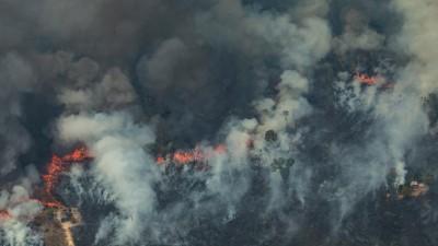 Der Amazonas brennt und Rauschschwaden hüllen den restlichen Wald ein. (FP/ GREENPEACE/Victor Moriyama )