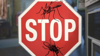 Warnung vor Stechmücken (imago/McPHOTO M. Begsteiger)