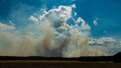 Brandwolken über dem Wald über Lübtheen. (picture alliance / dpa / Philipp Schulze)