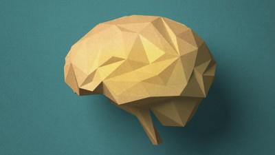Vor türkisem Hintergrund ist ein aus Pappe gebasteltes Gehirn zu sehen. (Getty Images / Digital Vision / Hiroshi Watanabe)