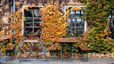 Leere Tische und Stühle stehen vor einem Restaurant im Nikolaiviertel in Berlin (picture alliance/Jens Kalaene/dpa-Zentralbild/dpa)