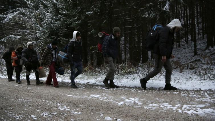 Eine Gruppe Geflüchteter geht durch einen Wald im Plješevica-Gebirge (picture alliance/AP Photo | Amel Emric)