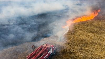 Die Feuerwehr versucht, die Waldbrände in Tschernobyl zu bekämpfen. (AFP/ Volodymyr Shuvayev)
