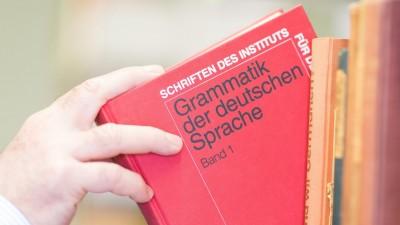 """Ein Buch mit der Aufschrift """"Grammatik der deutschen Sprache"""" wird aus einem Bücherregal genommen (picture alliance / dpa / Uwe Anspach)"""