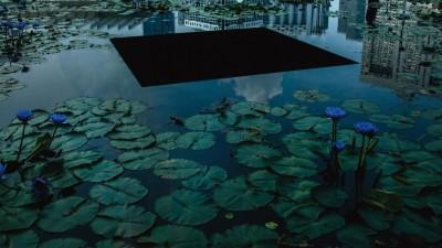Blick auf einen Teich mit Seerosen auf dem eine dunkle Plattform schwimmt. Am oberen Rand spiegelt sich die Stadt im Wasser. Die Töne sind dunkel gehalten. (Julia Steinigeweg)
