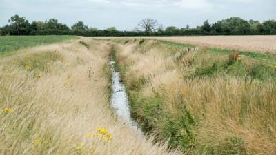 Dränagekanäle helfen, Regenwasser abzuleiten und in Trockenperioden für die Felder wieder nutzbar zu machen. (picture alliance / Photoshot)