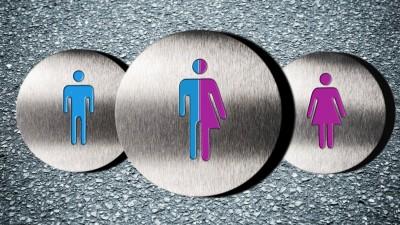 Piktogramm von Mann und Frau gemischt, Intersexualität (dpa / picture alliance / Christian Ohde)