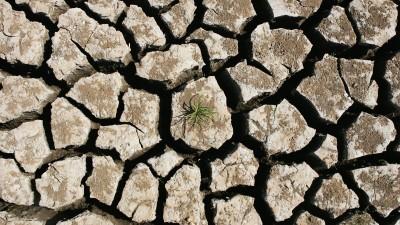 Das aus der Vogelperspektive aufgenommene Bild zeigt einen ausgetrockneten und aufgeplatzten Boden mit einer kleinen Pflanze. (Getty Images / Jonathan Wood)